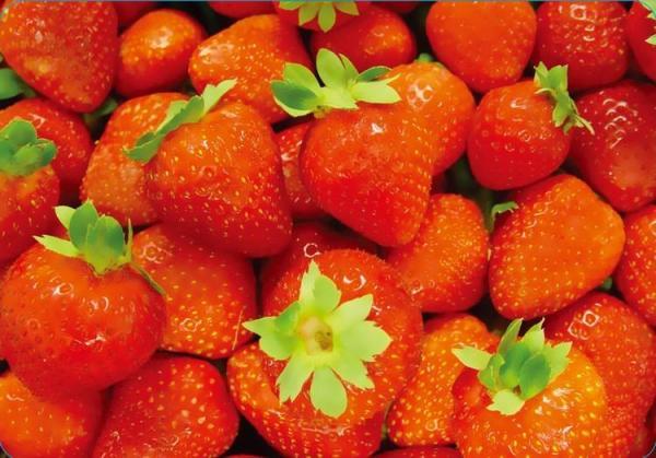 Stolové prostírání 430 x280 mm, PP, Strawberry
