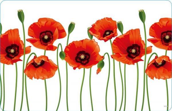 Stolové prostírání 430 x280 mm, PP, Poppy